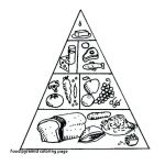 Acorn Coloring Pages Pretty Lovely Food Group Pyramid Coloring Page – Fym