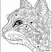 Adult Cat Coloring Pages Unique Lovely Cat Breeds Coloring Pages – Tintuc247