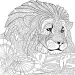 Adult Coloring Book Lion Amazing Stock Vector Big Cats and Jungle