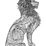 Adult Coloring Book Lion Brilliant All Natural Stress Relief Coloring Books