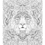 Adult Coloring Book Lion Wonderful Pin by Tracee Stewart On Coloring Pages Adults and Kids