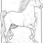 Adult Coloring Horses Awesome Lovely Mom and Baby Horse Coloring Pages – Kursknews