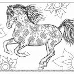 Adult Coloring Horses Best Beautiful Horse Coloring Pages