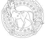 Adult Coloring Horses Creative Baby Horse Coloring Pages