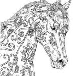 Adult Coloring Horses Exclusive 443 Best Coloring Horses Images In 2017