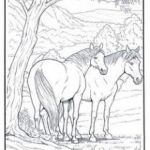 Adult Coloring Horses Inspiration Free Coloring Pages Horses