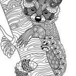 Adult Coloring Pages Animals Amazing 830 Best Animal Coloring Pages for Adults Images In 2019