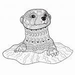 Adult Coloring Pages Animals Pretty Fresh Zoo Animals Coloring Pages – thebookisonthetable