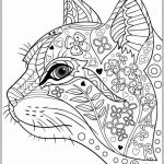 Adult Coloring Pages Cat Amazing Lovely Cat Breeds Coloring Pages – Tintuc247