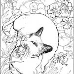 Adult Coloring Pages Cat Inspiration Coloring Pages Best Adult Coloring Pages Animals for Kids tocoloring