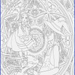 Adult Coloring Pictures Elegant 16 Adult Coloring Book Sets