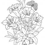 Adult Flower Coloring Pages Amazing Best Flower Vases Coloring Pages Nocn