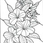 Adult Flower Coloring Pages Amazing Hawaii Coloring Pages Fresh New Flower Clipart Outline Colour In