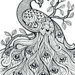 Advanced Coloring Pages Flowers Beautiful Advanced Animal Coloring Pages – Campradio