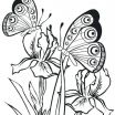 Advanced Coloring Pages Online Amazing butterfly Coloring Page Printable astonising butterfly Coloring