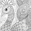 Advanced Online Coloring Pages Awesome √ Coloring Book Line for Adults or Coloring Pages Peacock S S