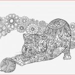 Alice In Wonderland Coloring Book Disney Fresh Advanced Peacock Coloring Pages Free for Geometric Mandala Adults