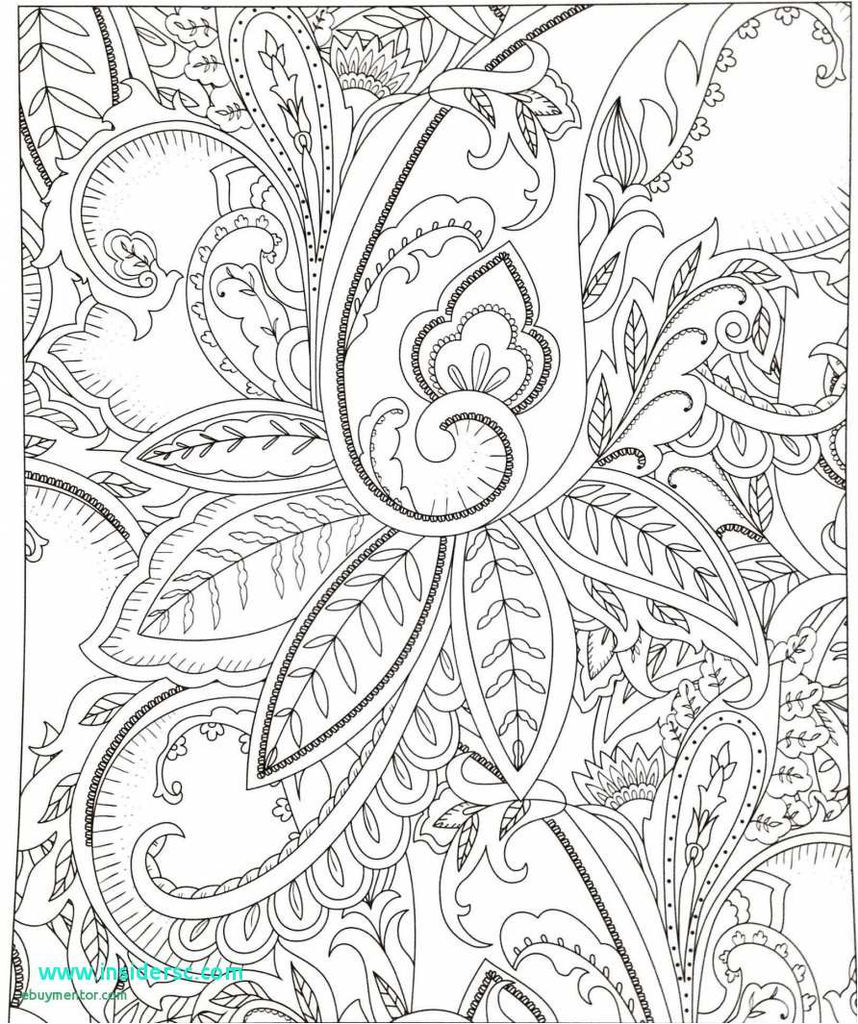 Fresh for Seniors Coloring Page 2019