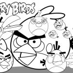 Angry Bird Color Book Wonderful Birds Coloring Pages Printable