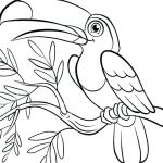 Angry Bird Coloring Book Wonderful Space Printable Coloring Pages – Cheapflowersfo
