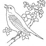 Angry Bird Coloring Books Inspiration Awesome Angry Birds Black Bird Coloring Page – Kursknews