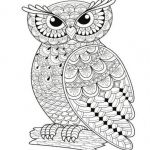 Angry Bird Coloring Page Creative Flying Bird Coloring Page New Luxury Owl Coloring Pages Coloring