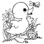 Angry Bird Coloring Page Inspiration Incredible Coloring Pages Bird Pdf Picolour