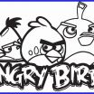 Angry Birds Coloring Books Awesome New Girl Angry Bird Coloring Pages – Howtobeaweso