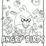 Angry Birds Pigs Coloring Pages Beautiful 202 Best Angry Birds Activities Images In 2018