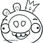 Angry Birds Pigs Coloring Pages Inspiring Coloring Pages Angry Birds Go – Queenandfatchef