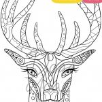 Animal Coloring Pages Pdf Inspired Adult Coloring Book 17 Animals Coloring Pages Pdf Printable Anti
