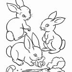 Baby Coloring Pages Amazing Beautiful Cute Animal Baby Coloring Pages – Exad