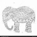 Baby Elephant Color Pages Marvelous 23 Elephant Mandala Coloring Pages Download Coloring Sheets