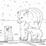 Bear Coloring Pages Exclusive Luxury Karma Wilson Bear Coloring Pages – Dazhou