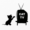 Black Cat Silhouette Best Cat Tv the Ultimate Tv for Cats On the App Store