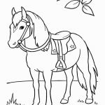 Breyer Horse Coloring Pages Best Beautiful Horse Best the Beautiful White Almost Glowing