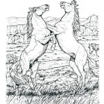 Breyer Horse Coloring Pages Excellent Free Horse Coloring Pages for Adults at Getdrawings
