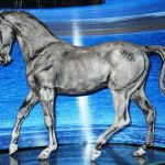 Breyer Horse Coloring Pages Inspiration Determining the Value Of Breyer Horses