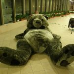 Build A Bear Printable Inspirational Gigantic Teddy Bear 5 Steps with