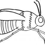 Bumble Bee Coloring Sheet New Bee Coloring Page Bumble Bees Coloring Pages Bumble Bee Coloring