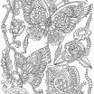 Butterfly Adult Coloring Pages Beautiful √ Free Printable Geometric Coloring Pages Adults and Steampunk