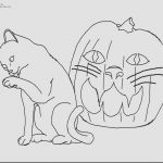 Cat Coloring Pages for Adults Best Of Picasso Coloring Pages toiyeuemz