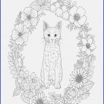 Cat Coloring Pages for Adults New 10 Awesome Free Disney Princess Coloring Pages androsshipping