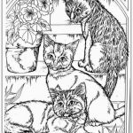 Cats and Kittens Coloring Books Brilliant Coloring Book World Coloring Pages Ideas Adults Cat Head