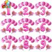 Chase From Paw Patrol Pictures New Us $3 42 Off 13pcs Pink Sky Chase Paw Patrol Pink Blue Heart Foil Balloon Number 123 Birthday Party Decor Helium Globos Kids toys Baby Shower In