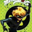 """Chat Noir Mask Brilliant Claws Out"""" Cat Noir Wall Scroll In 2019"""