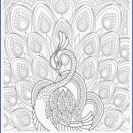 Chewbacca Coloring Page Creative Idees Fluch Pumpkin Coloring Pages Wiki Design