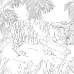 Chicago Cubs Coloring Book Beautiful Landschaft Chicago Cubs Coloring Pages Wiki Design