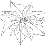 Christmas Mandala to Color Amazing Christmas Flower Coloring Pages Cool Coloring Printables 0d Fun