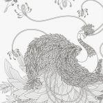 Christmas ornaments Coloring Pages Printable Inspirational Realistic Bird Coloring Pages Elegant 28 Collection Nebraska